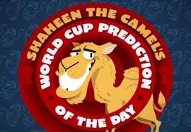 پیشبینی شتر پیشگو درباره بازی آرژانتین – هلند