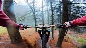 استرس و هیجان در دوچرخه سواری در جنگل