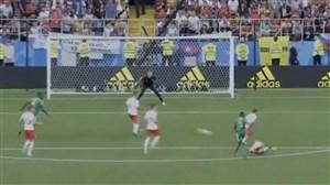 زاویه دید شزنی روی گل سنگال به لهستان
